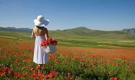 I giardini fioriti pi belli viaggiatori e turisti - Immagini di giardini fioriti ...