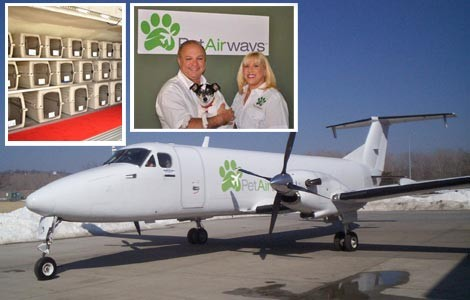 pet_airways.jpg
